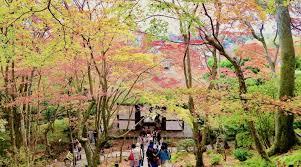 2016年10月 – 京都観光とグルメのブログ