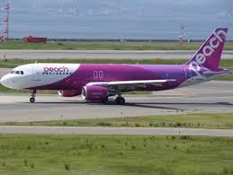 LCCのピーチ航空 搭乗するならこれを用意したい。 | リアルな搭乗 ...
