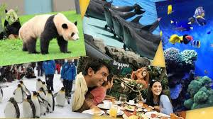 世界の動物園&水族館ランキング発表