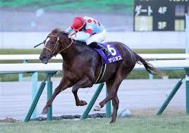 サリオスは皐月賞直行 レーン騎手の予定 - サンスポZBAT!競馬