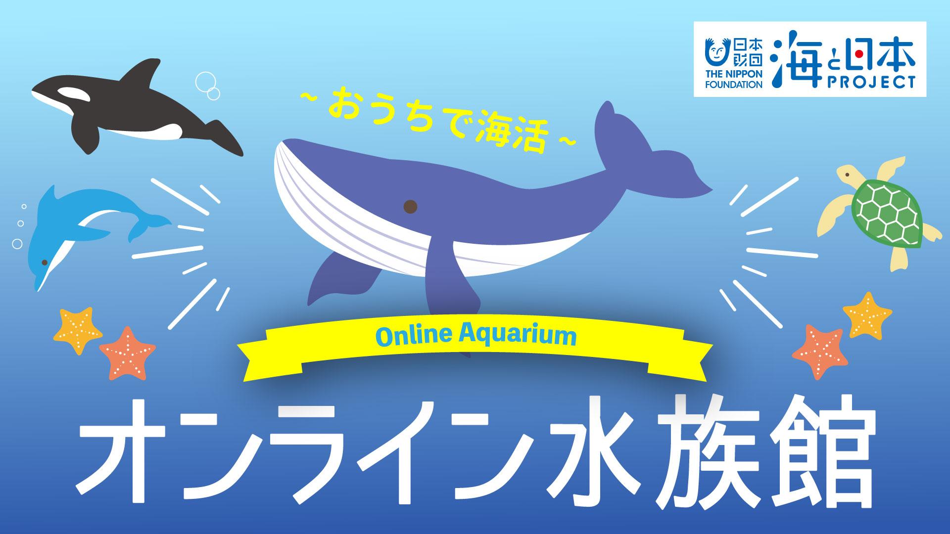 おうちで海活 オンライン水族館】第3弾配信しました! | 海と日本 ...