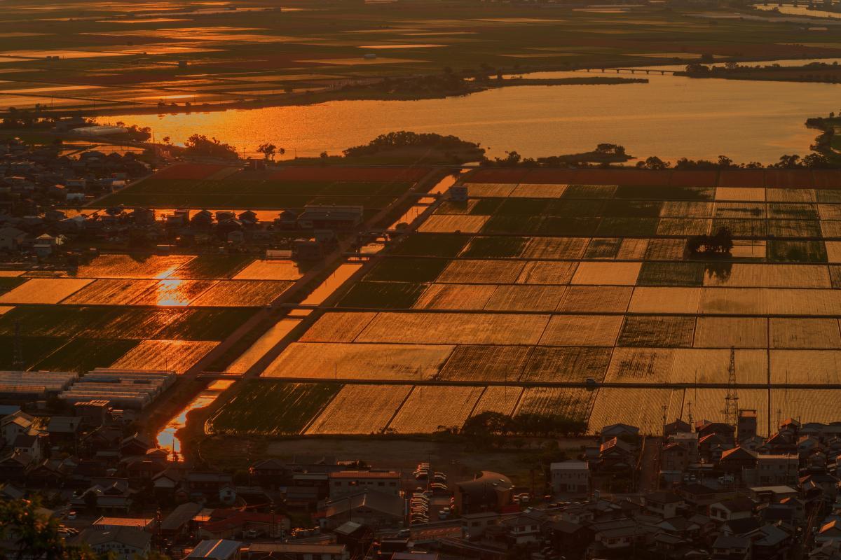 猪子山公園」北向岩屋十一面観音 展望台から望む夕焼けに染まる水田と ...