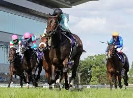デアリングタクト、史上初・無敗の牝馬3冠に現実味 人馬一体でオークス ...