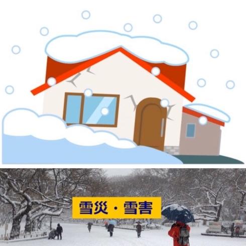 火災保険は雪害・雪災にも使える場合があるんです~! | 株式会社三星 ...