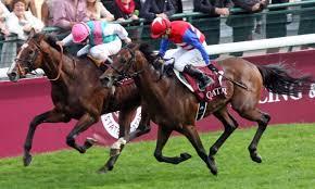ナカヤマフェスタとかいう凱旋門賞制覇に一番近づいた馬