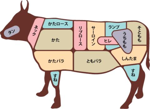 牛肉の部位について|佐賀県多久インター近くの佐賀牛のヤマサン食品