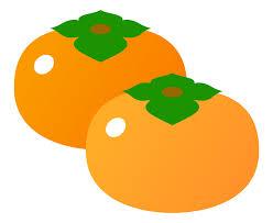 柿(2個)のイラスト | 無料のフリー素材 イラストエイト