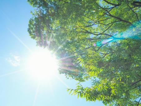 紫外線の写真素材|写真素材なら「写真AC」無料(フリー)ダウンロードOK