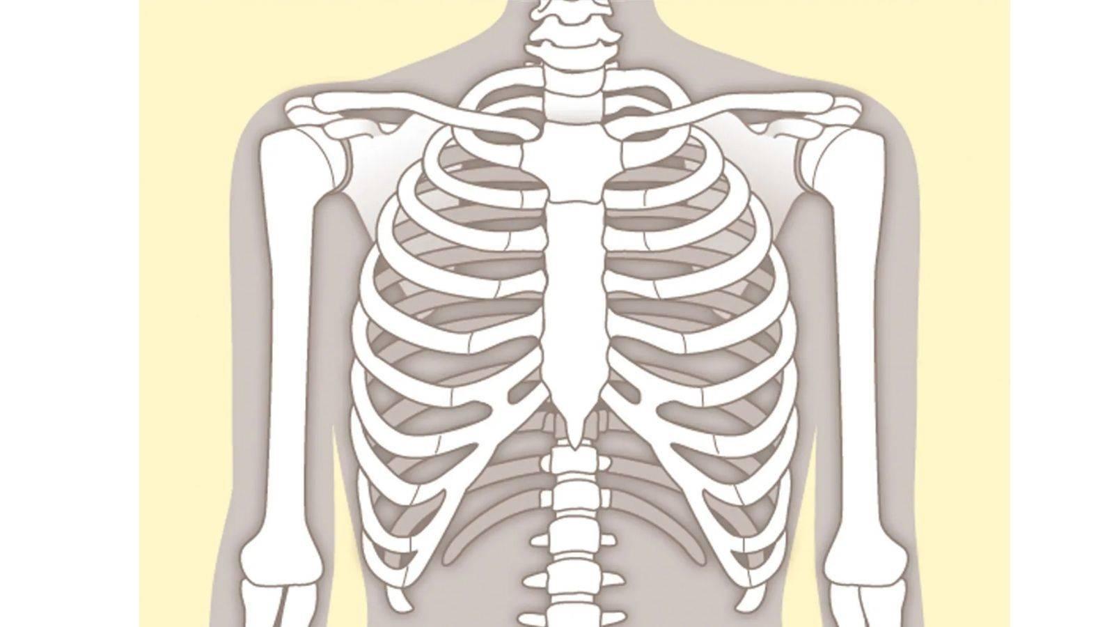 肩関節の緊張が取れ、肩のつまりが解消する「腕の動かし方」【ために ...