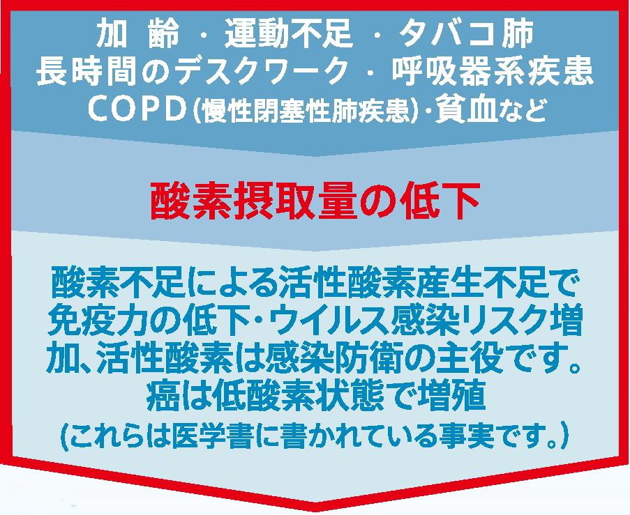 ウイルス対策、肺疾患に、COPDや動脈硬化の予防に酸素濃縮器CFOC-F ...