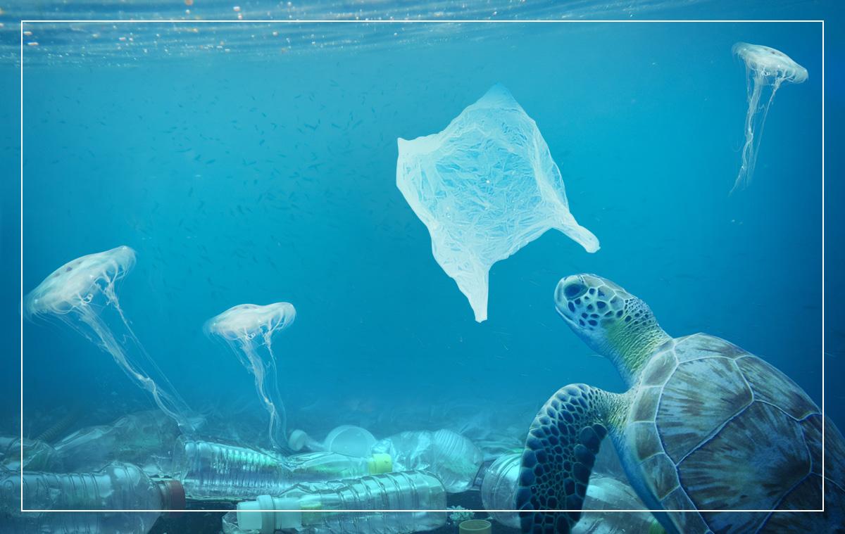 海洋プラスチックゴミ」の脅威とは/Reading keywords|Future CLIP ...