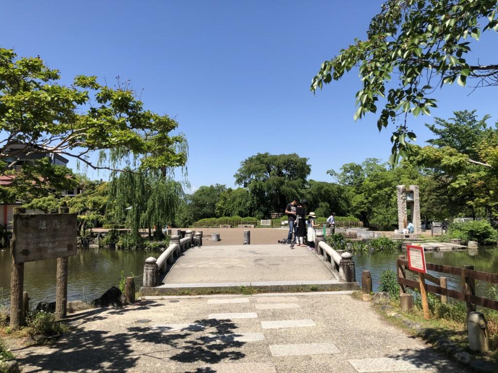 円山公園 ふと足を止めたくなる、京都随一の癒しの場   EeNa「ええな ...