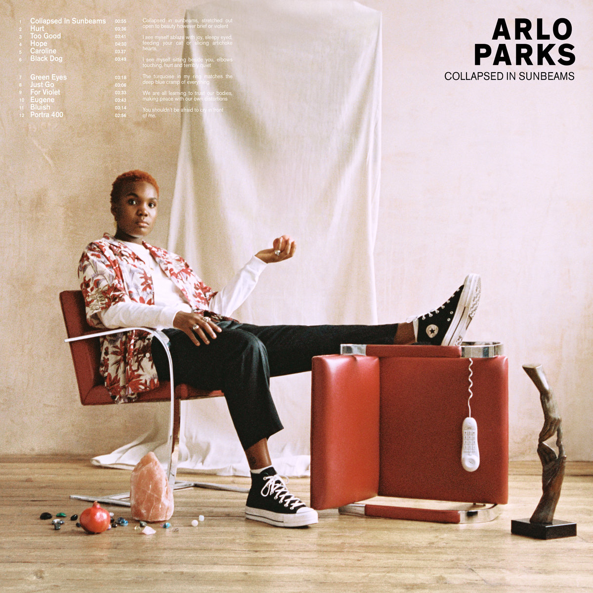 Collapsed in Sunbeams | Arlo Parks