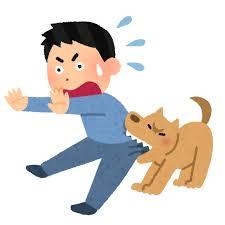 福岡市 動物由来感染症について