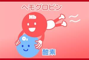 ヘモグロビン(Hb)は酸素を運ぶ真っ赤な運送屋さん 【臨床検査科 ...