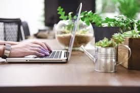 ノートパソコンと観葉植物 - No: 1036531|写真素材なら「写真AC」無料 ...