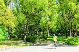 スロージョギングの写真素材|写真素材なら「写真AC」無料(フリー ...