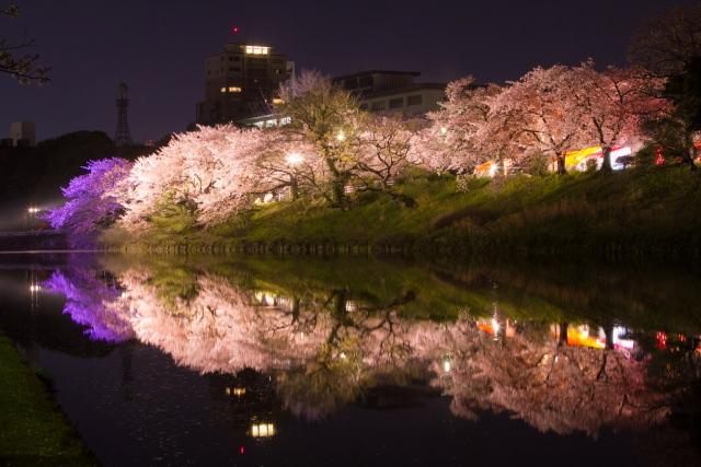 定番から穴場まで!福岡県で桜のお花見におすすめな絶対行くべき人気の ...