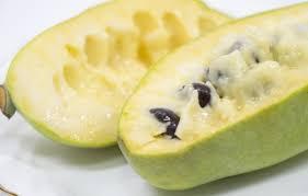 ポポー(ポーポー)とは?幻のフルーツともいわれる実の特徴や食べ方は ...