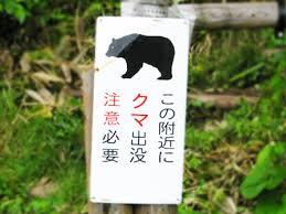 前年の5倍に激増!愛知県のツキノワグマ目撃情報最新版(令和元年 ...