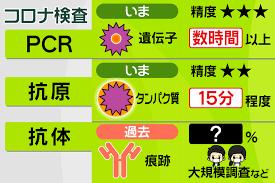 043 抗原検査とは?|プライチ|news zero|日本テレビ