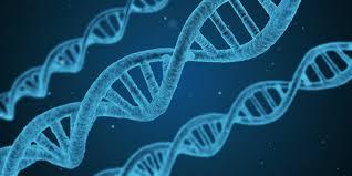 無料イラスト] DNA - パブリックドメインQ:著作権フリー画像素材集