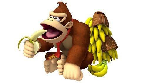 生物科の学生さんが「ゴリラはバナナを食べない」と言っていたので調べ ...