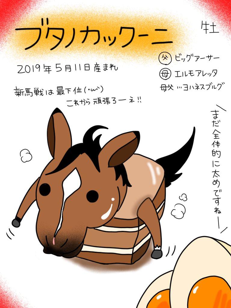 ブタノカックーニ - Twitter Search