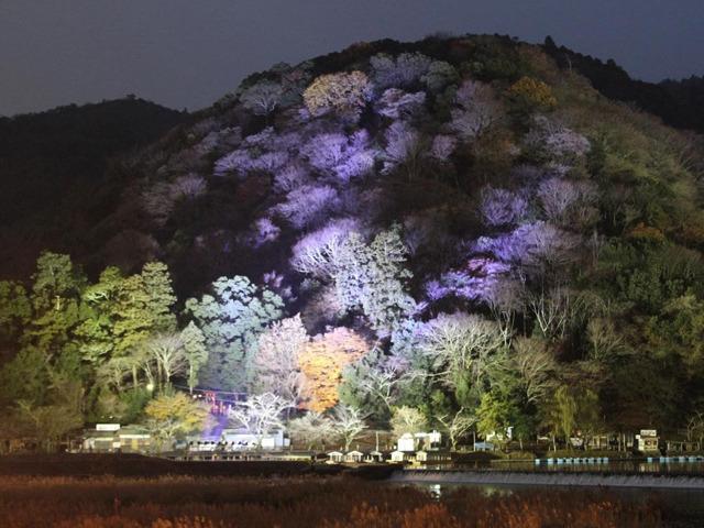 日本の冬は美しい! 冬の京都で訪れるべき絶景スポット | トラベルマガジン