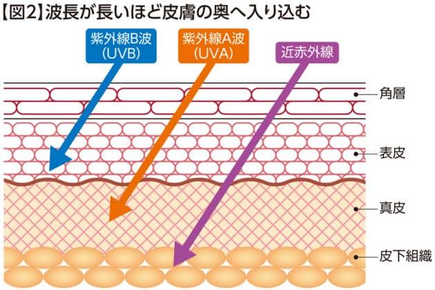 肌の老化」8割は太陽光が原因 日焼け止め習慣を|ヘルスUP|NIKKEI STYLE