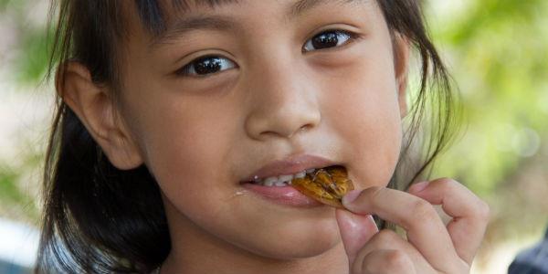 何でも食べる韓国人!ついに政府が国民に虫を食べる政策を推し進める ...