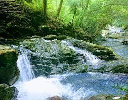 天然のクーラー‼ 福岡市唯一の渓谷「野河内渓谷」(福岡市早良区 ...