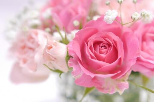 dele(ディーリー)の5本のバラの花言葉の意味は? - 気になる話題
