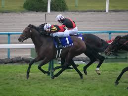 ステルヴィオ (競走馬) - Wikipedia
