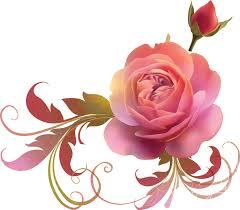 バラの花の画像・イラスト2/無料のフリー素材集【百花繚乱】