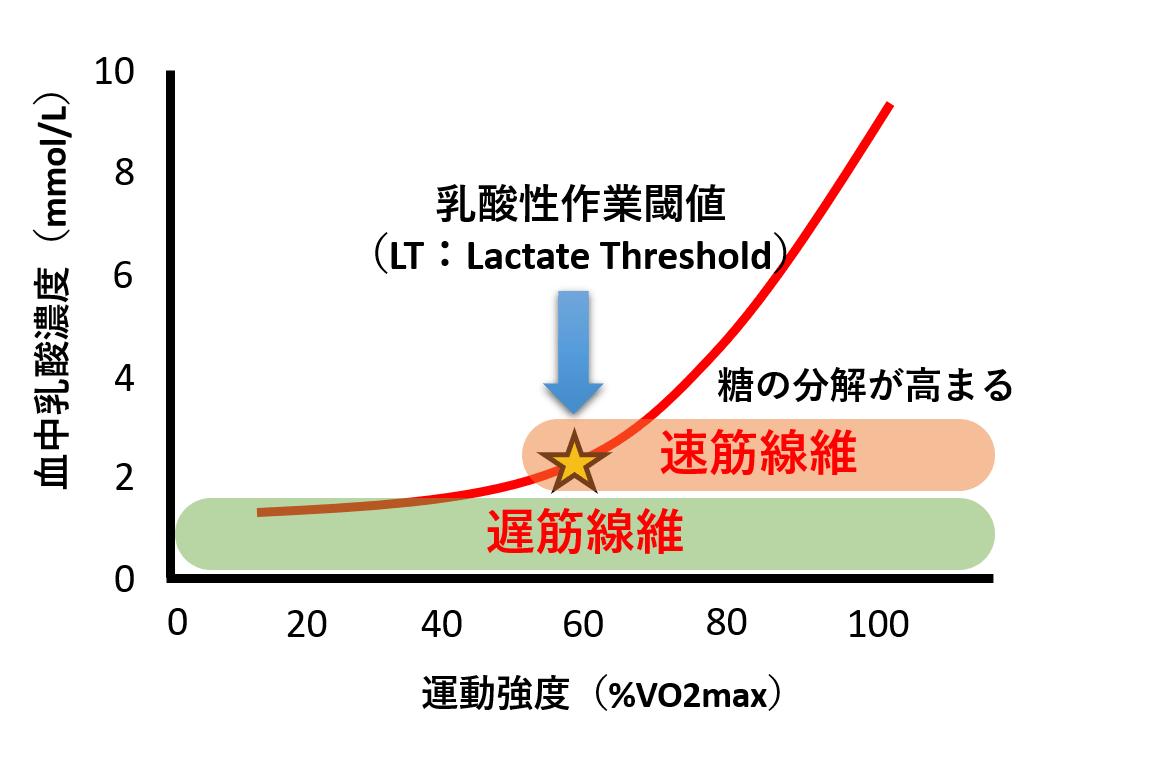 よくわかる乳酸性作業閾値(LT:Lactate threshold) - 陸上競技の理論と ...