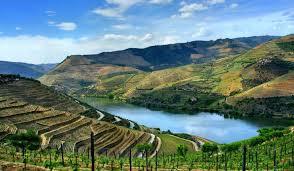 アルト・ドウロ・ワイン生産地域 ポルトガル 世界遺産オンラインガイド