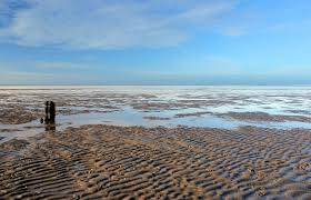 ワッデン海|ドイツ・オランダ・デンマーク|世界遺産オンラインガイド