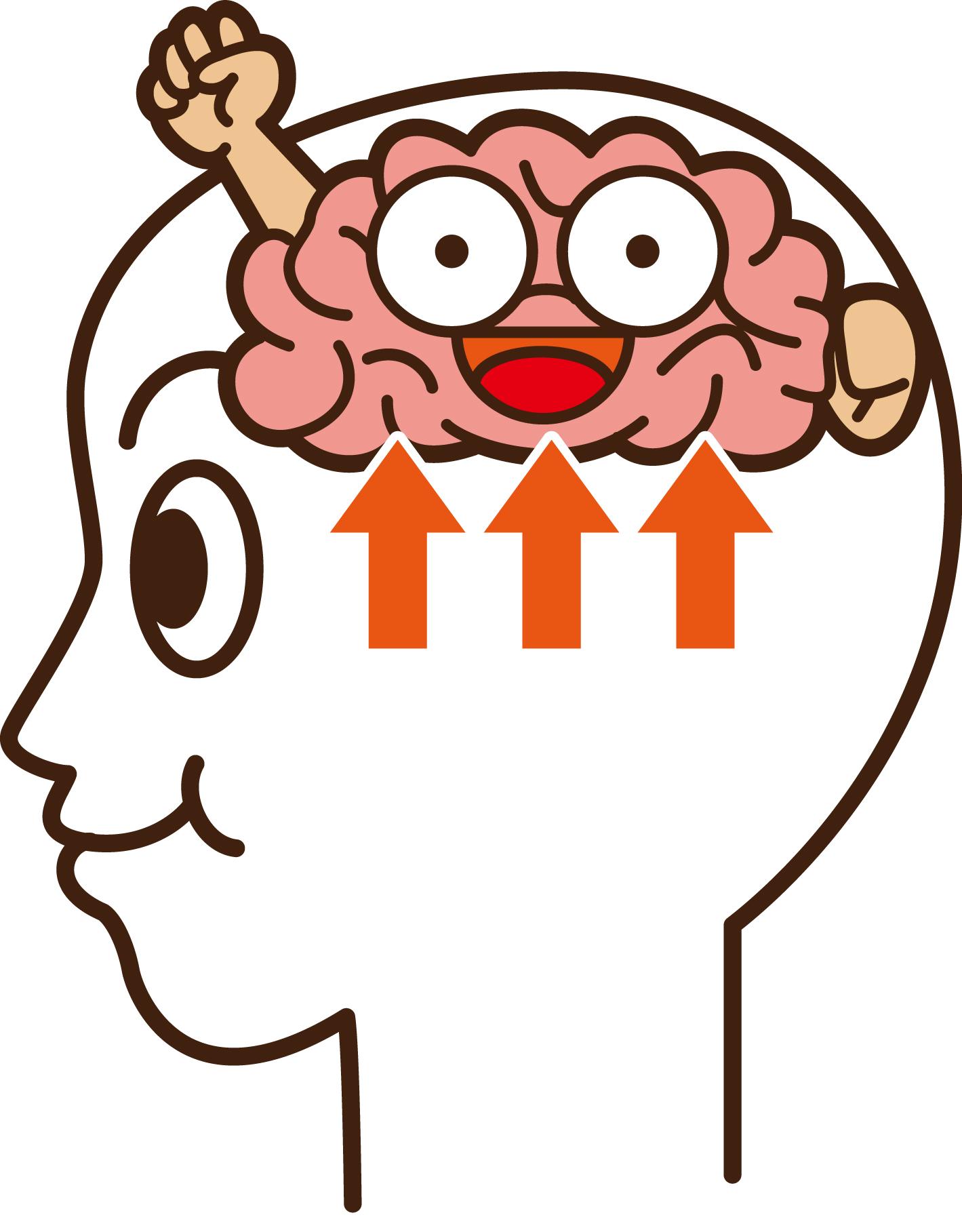 脳のひみつ | イルチブレインヨガ橿原スタジオ