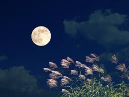 今日は十五夜。お月見したい相手でわかる、あなたの気配り力 #深層心理 ...
