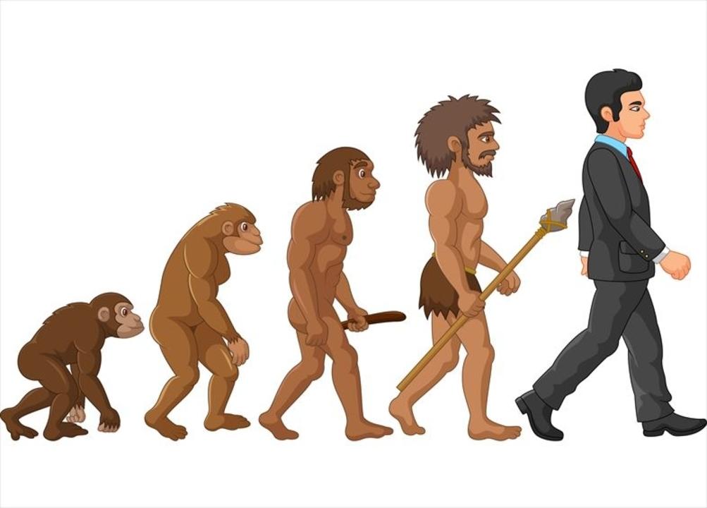 節子、それ科学やない...! 進化論がトルコの教科書から外されることに ...