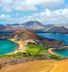 エクアドル】世界遺産「ガラパゴス諸島」の観光ガイド:多様な動物 ...