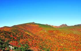 岳温泉観光協会 - 今年ももうすぐ、安達太良山の紅葉の季節がやってき ...