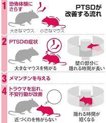 朝日新聞(The Asahi Shimbun) - 薬でトラウマ消えた? マウスで確認 ...