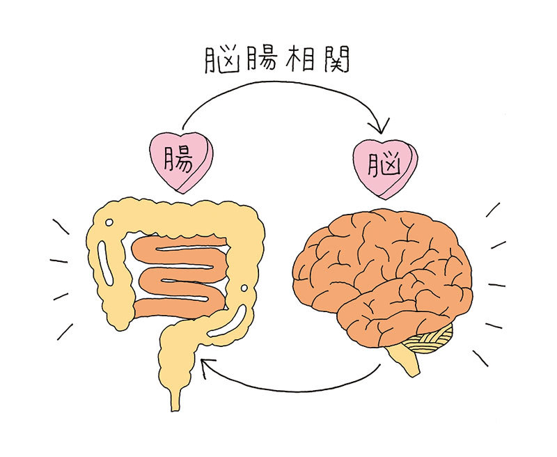 幸福度も性格も左右する!? 腸が変われば、人生が変わる ...