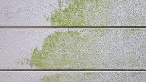簡単に取れます! 外壁にコケが生える原因ときれいに取る方法   屋根 ...