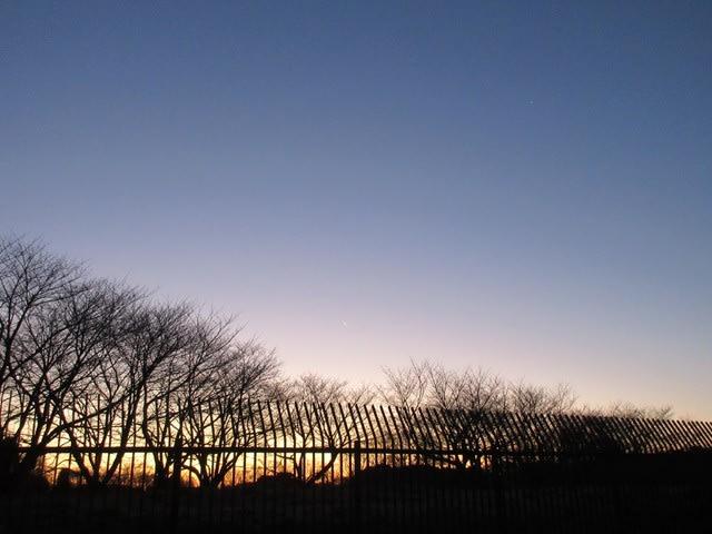 朝の空、三日月 - おべんとう&フリー素材