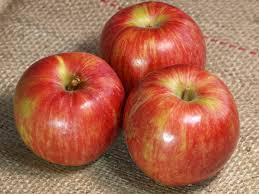 最高の無料イラスト: 50+りんご 写真 フリー
