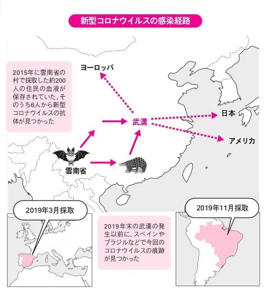 新型コロナ「武漢より前に世界拡散」の衝撃事実   新型コロナ、長期戦の ...