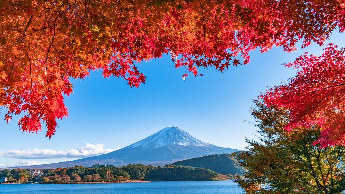 英語の「秋」、2つの呼び名の知られざる紆余曲折 | 実践!伝わる英語 ...